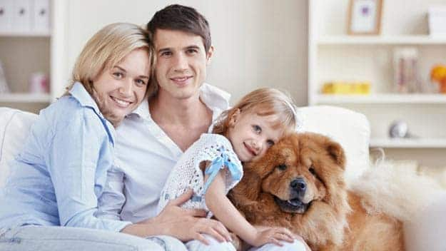 Wills & Trusts dog-young-family Direct Wills Sunningdale